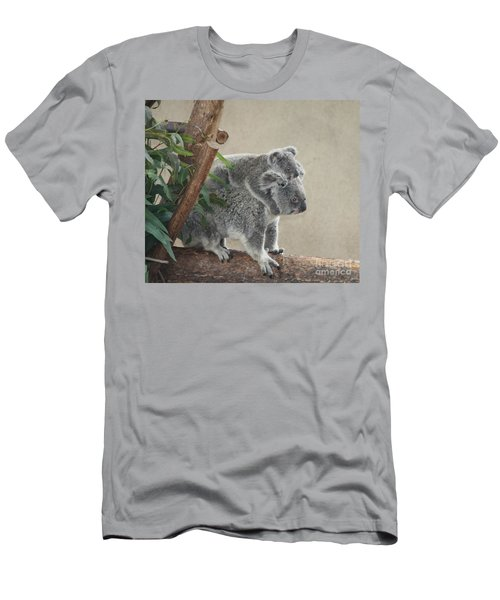 Mother And Child Koalas Men's T-Shirt (Slim Fit) by John Telfer