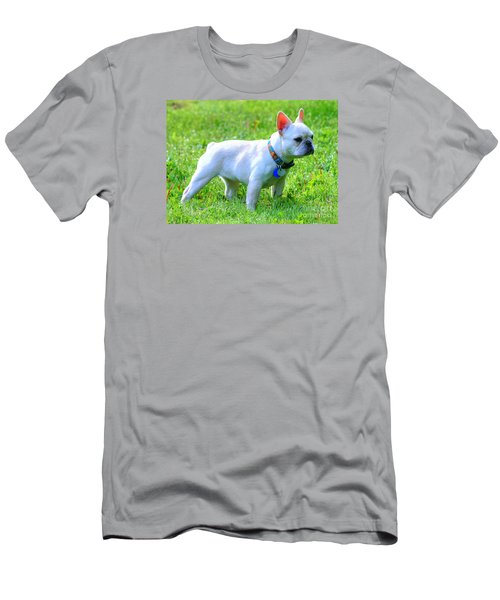 Ms. Quiggly - French Bulldog Men's T-Shirt (Athletic Fit)