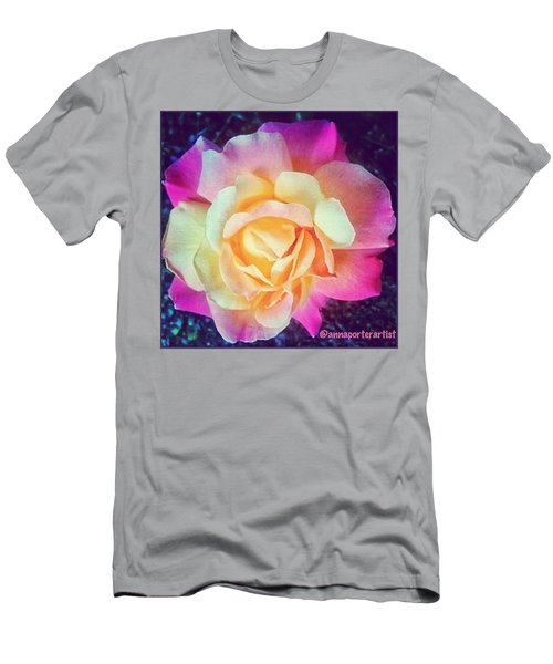 My Favorite Rose - The Lady Diana Men's T-Shirt (Athletic Fit)