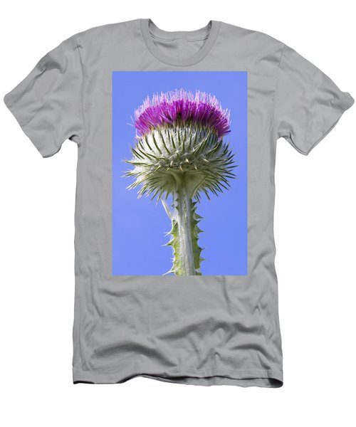 National Flower Of Scotland Men's T-Shirt (Athletic Fit)