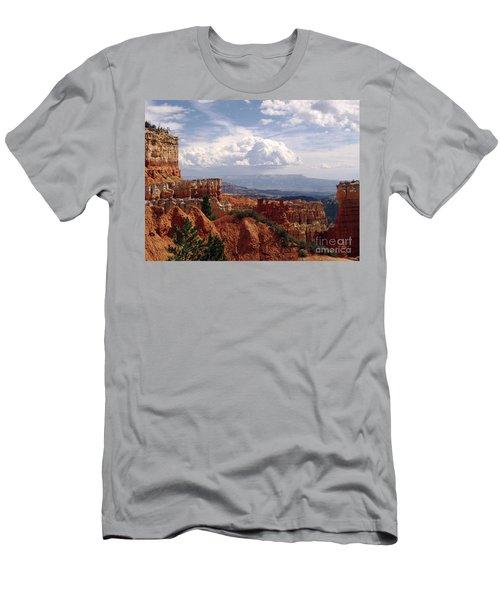 Nature's Symmetry Men's T-Shirt (Athletic Fit)