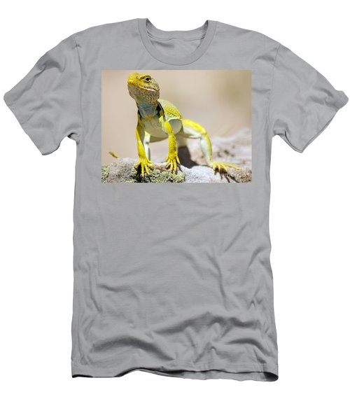 New Photographic Art Print For Sale Yellow Lizard Ghost Ranch New Mexico Men's T-Shirt (Athletic Fit)