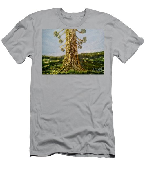 Old Tree In Spring Light Men's T-Shirt (Slim Fit) by Felicia Tica