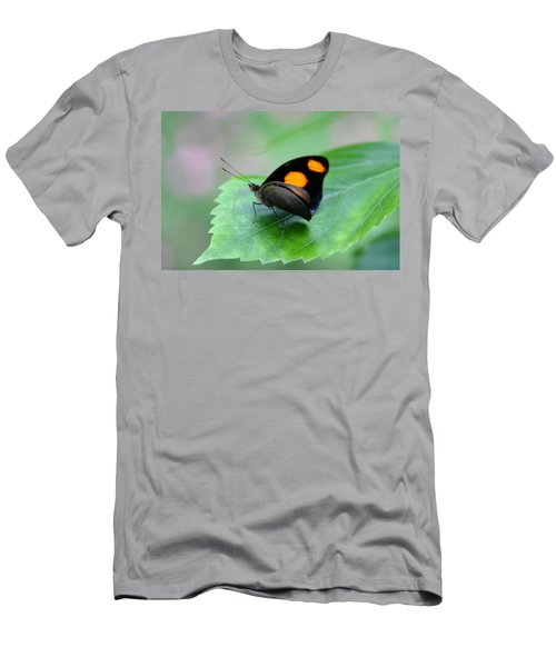 On The Leaf Men's T-Shirt (Athletic Fit)