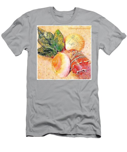All The Beautiful Shells Men's T-Shirt (Athletic Fit)