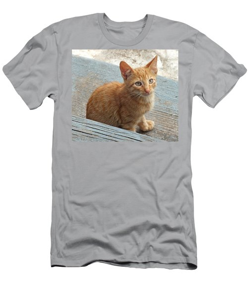 Orange Kitten 2 At The Front Porch Men's T-Shirt (Athletic Fit)