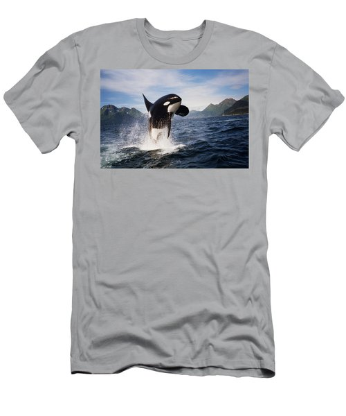 Orca Breach Men's T-Shirt (Athletic Fit)