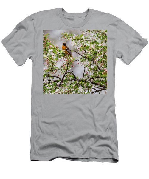 Oriole In Crabapple Tree Square Men's T-Shirt (Slim Fit) by Bill Wakeley