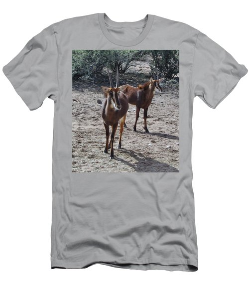 Out Of Africa B Men's T-Shirt (Athletic Fit)