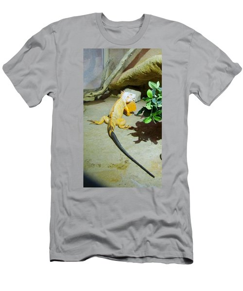 Out Of Africa Orange Lizard 2  Men's T-Shirt (Athletic Fit)