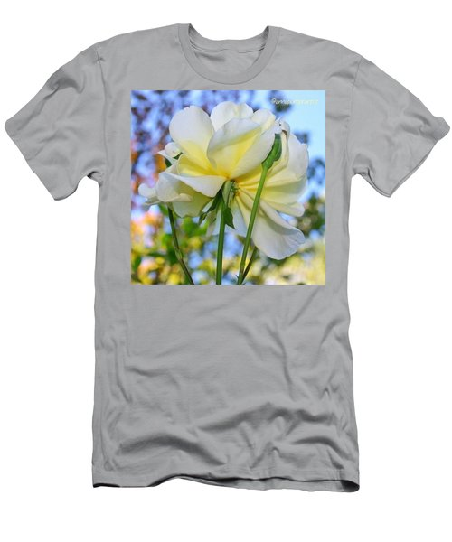 Pale Yellow Rose And Blue Sky Men's T-Shirt (Athletic Fit)