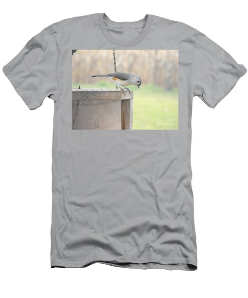 Peeking Chickadee Men's T-Shirt (Athletic Fit)