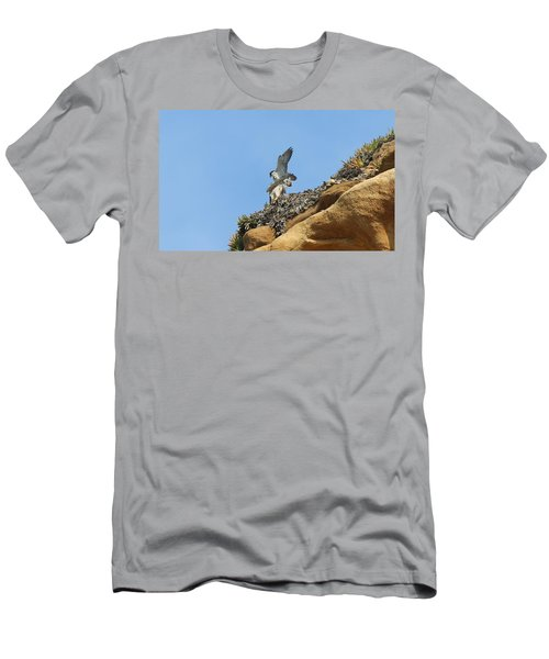 Peregrine Falcons - 3 Men's T-Shirt (Athletic Fit)