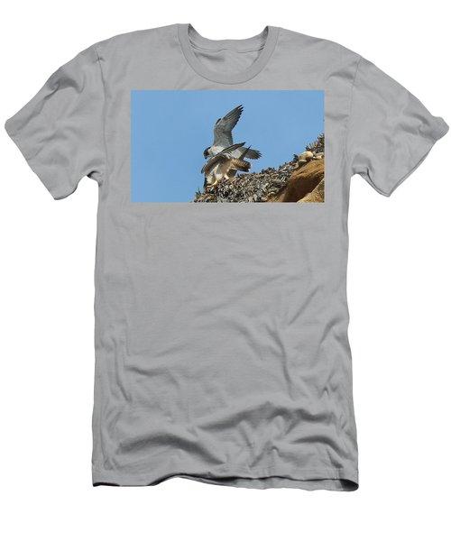 Peregrine Falcons - 4 Men's T-Shirt (Athletic Fit)