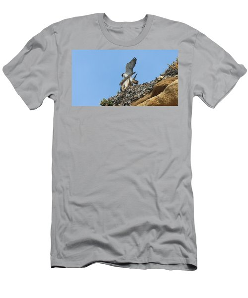 Peregrine Falcons - 5 Men's T-Shirt (Athletic Fit)