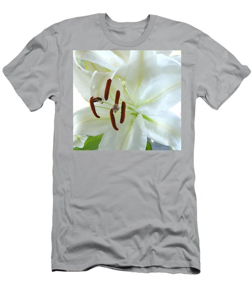 Pollinated White Tiger Lily Men's T-Shirt (Athletic Fit)