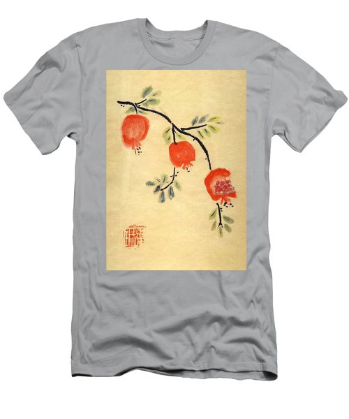 Pomegranates Men's T-Shirt (Athletic Fit)