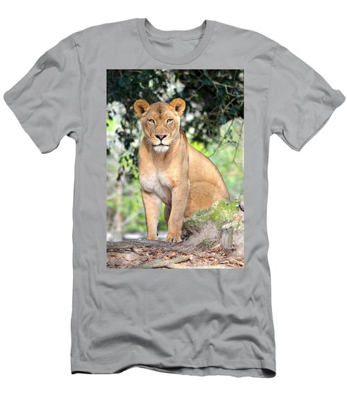 Portrait Of A Proud Lioness Men's T-Shirt (Slim Fit) by Richard Bryce and Family