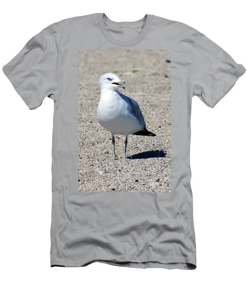 Men's T-Shirt (Slim Fit) featuring the photograph Posing Gull by Debbie Hart