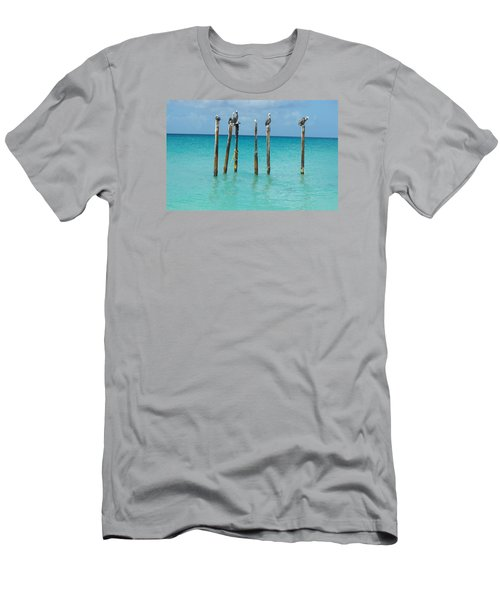 Posted Seagull Men's T-Shirt (Slim Fit) by David and Lynn Keller