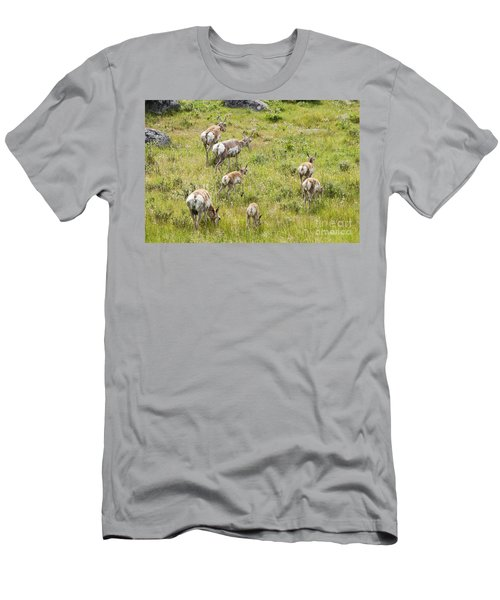 Men's T-Shirt (Slim Fit) featuring the photograph Pronghorn Antelope In Lamar Valley by Belinda Greb