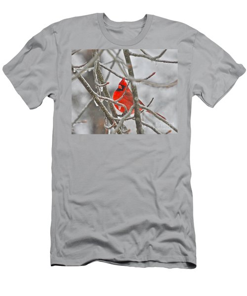 Red Cardinal Northern Bird Men's T-Shirt (Athletic Fit)