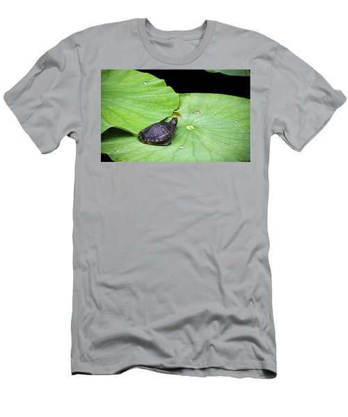 Red-eared Slider Men's T-Shirt (Slim Fit) by Greg Reed
