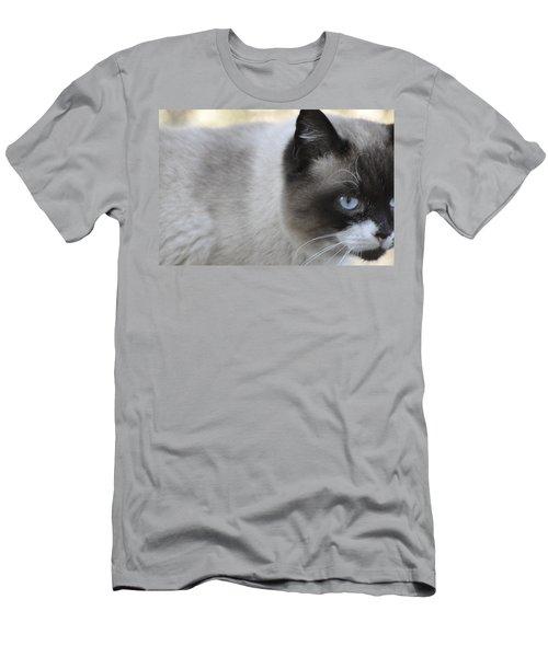 Ringtail Men's T-Shirt (Slim Fit) by Sarah McKoy