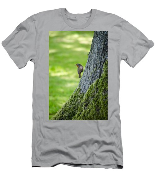 Robin At Rest Men's T-Shirt (Slim Fit) by Spikey Mouse Photography