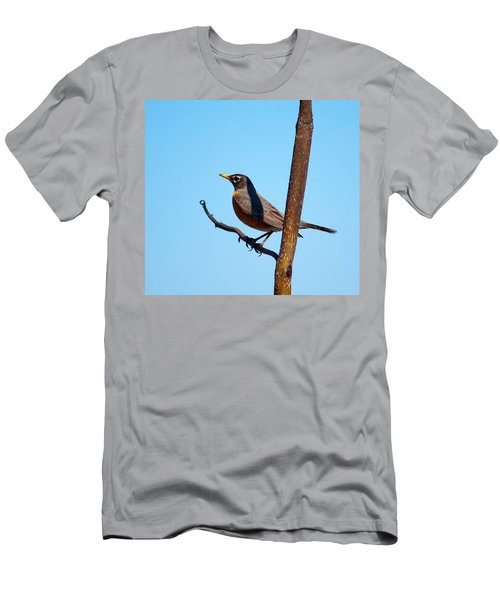 Robin Taking A Break Men's T-Shirt (Athletic Fit)
