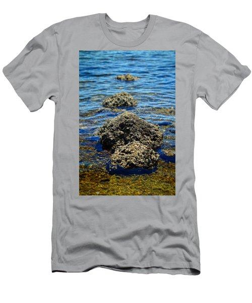 Rocks 6762 Men's T-Shirt (Athletic Fit)