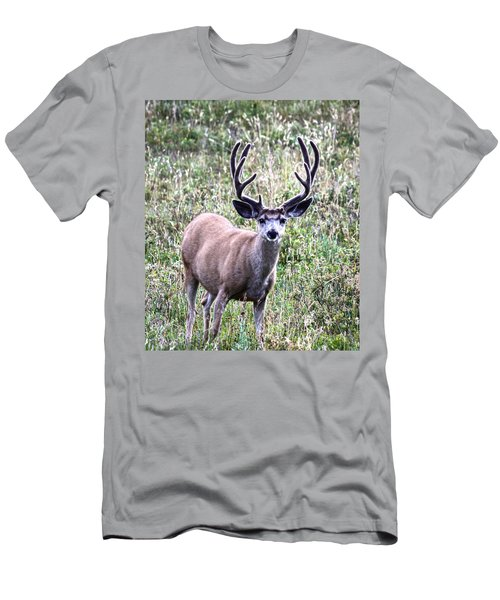 Rocky Mountain Buck Men's T-Shirt (Athletic Fit)
