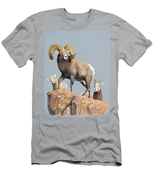 Rocky Mountain Ram Ewe And Lamb Men's T-Shirt (Athletic Fit)