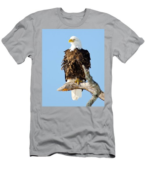 Ruffled Eagle Men's T-Shirt (Athletic Fit)