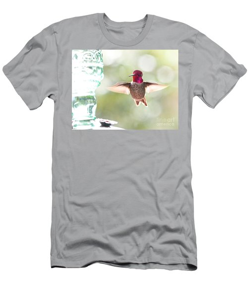 Rufous Hummingbird Men's T-Shirt (Athletic Fit)