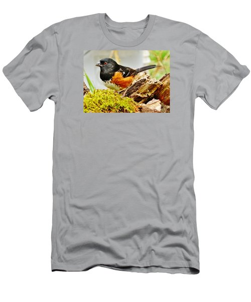 Men's T-Shirt (Slim Fit) featuring the photograph Spotted Towhee by VLee Watson