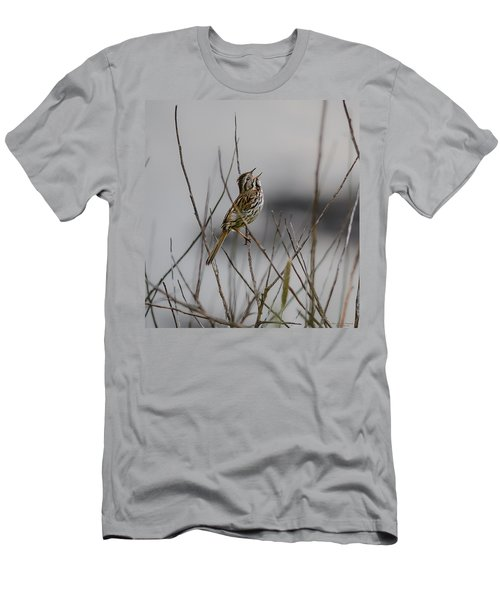 Savannah Sparrow Men's T-Shirt (Athletic Fit)
