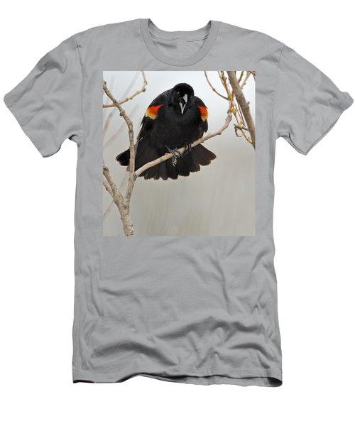 Screaming Meenie Men's T-Shirt (Athletic Fit)