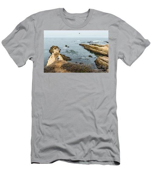 Sea Life Cliffs Men's T-Shirt (Athletic Fit)