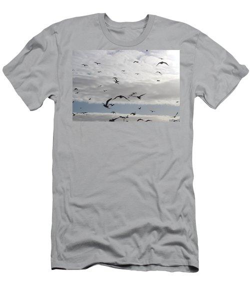 Seagulls Men's T-Shirt (Athletic Fit)