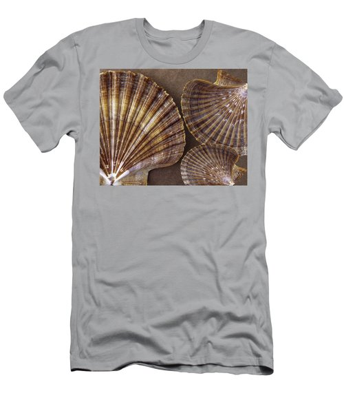 Seashells Spectacular No 7 Men's T-Shirt (Athletic Fit)