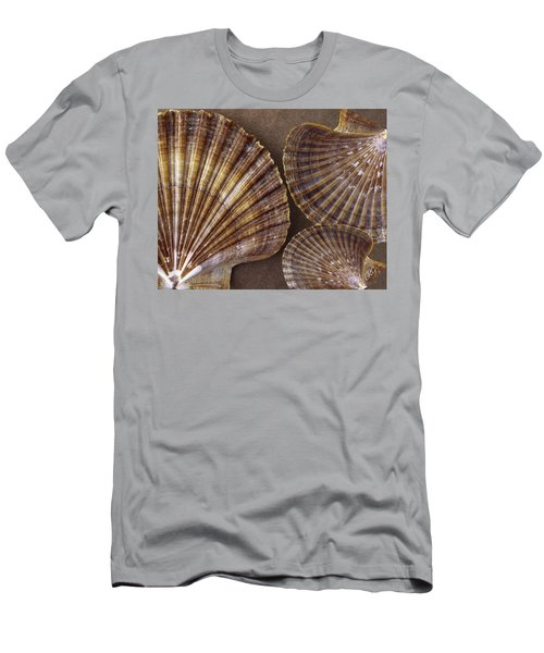Seashells Spectacular No 7 Men's T-Shirt (Athletic Fit)