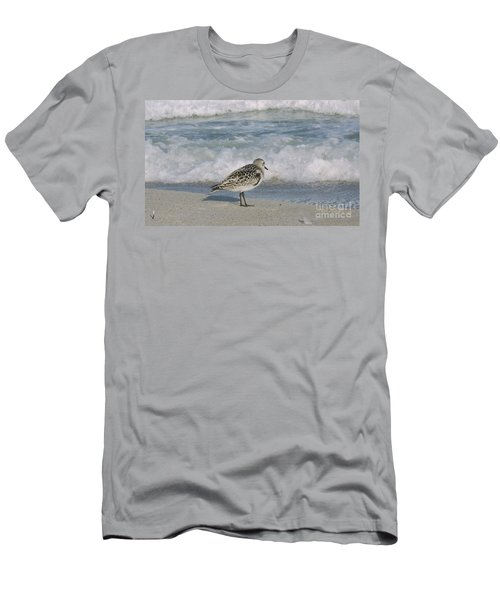 Semiplated Sandpiper Men's T-Shirt (Athletic Fit)