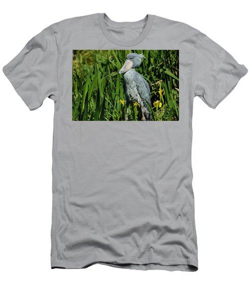 Shoebill Stork Men's T-Shirt (Athletic Fit)
