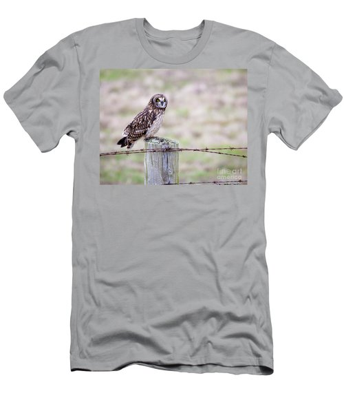 Short Eared Owl Boundary Bay Men's T-Shirt (Athletic Fit)
