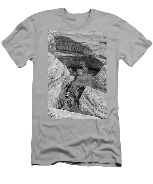 Sipapu Path Men's T-Shirt (Athletic Fit)