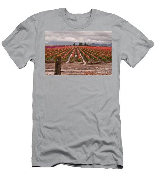 Skagit Valley Tulip Farmlands In Spring Storm Art Prints Men's T-Shirt (Slim Fit) by Valerie Garner