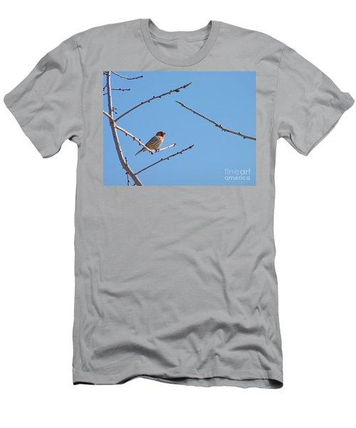 Sky Blue Beauty Men's T-Shirt (Athletic Fit)