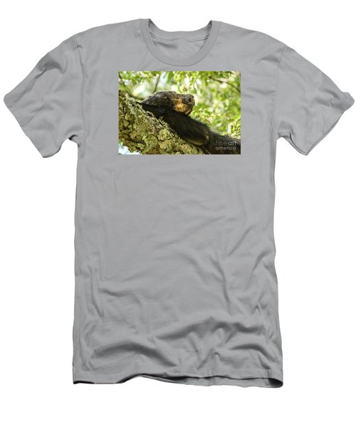 Sleeping Bear Men's T-Shirt (Slim Fit) by Debbie Green