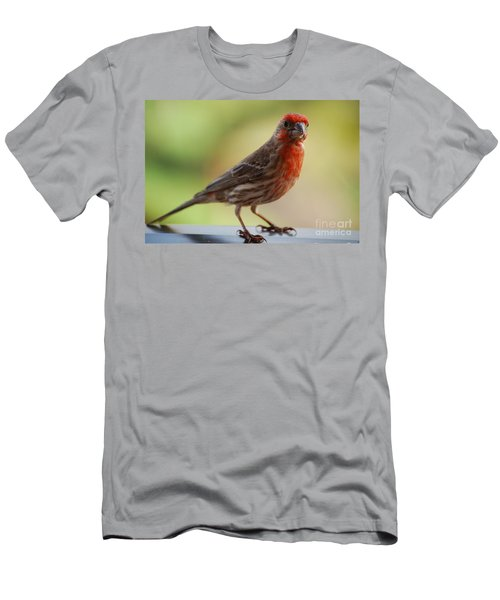 Small Brown And Red Bird Men's T-Shirt (Slim Fit) by DejaVu Designs